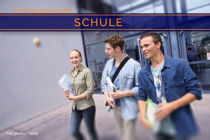 Profilelement »Schule«